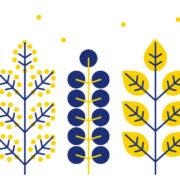 Motif complet du mug Feuillages Et Mimosa