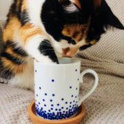 Le mug Dotted